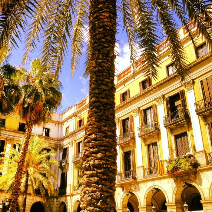 placa reail in barcelona